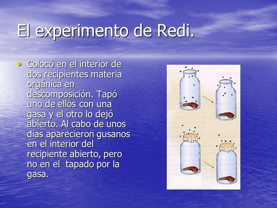 El experimento de Redi.