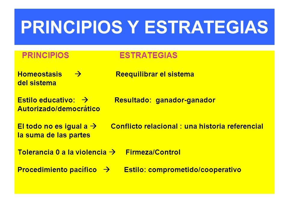 PRINCIPIOS Y ESTRATEGIAS