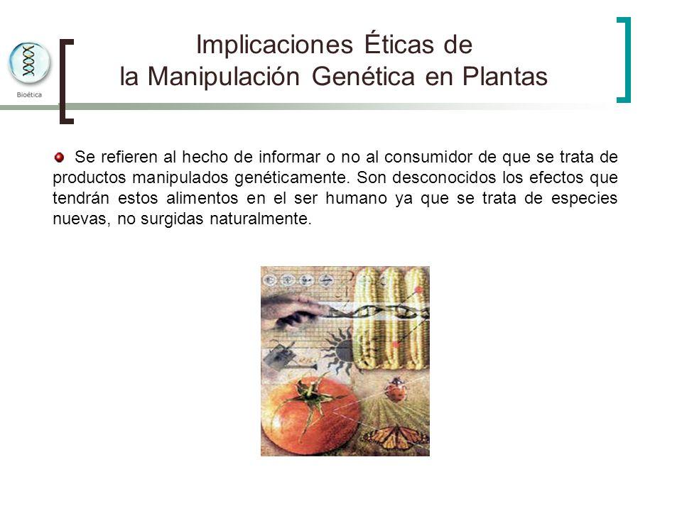 Implicaciones Éticas de la Manipulación Genética en Plantas