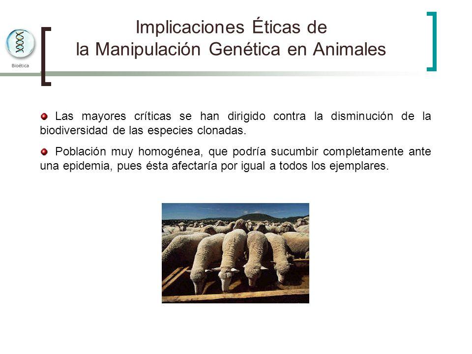 Implicaciones Éticas de la Manipulación Genética en Animales