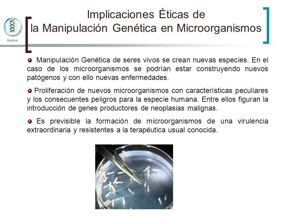 Implicaciones Éticas de la Manipulación Genética en Microorganismos