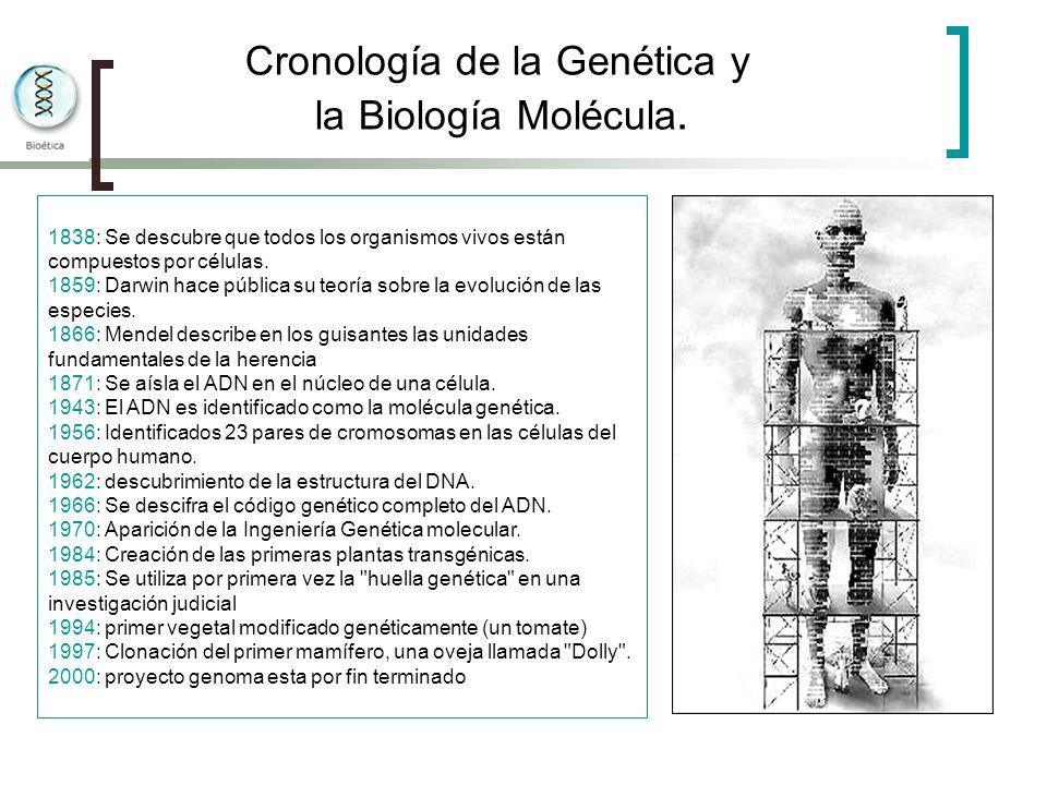 Cronología de la Genética y la Biología Molécula.