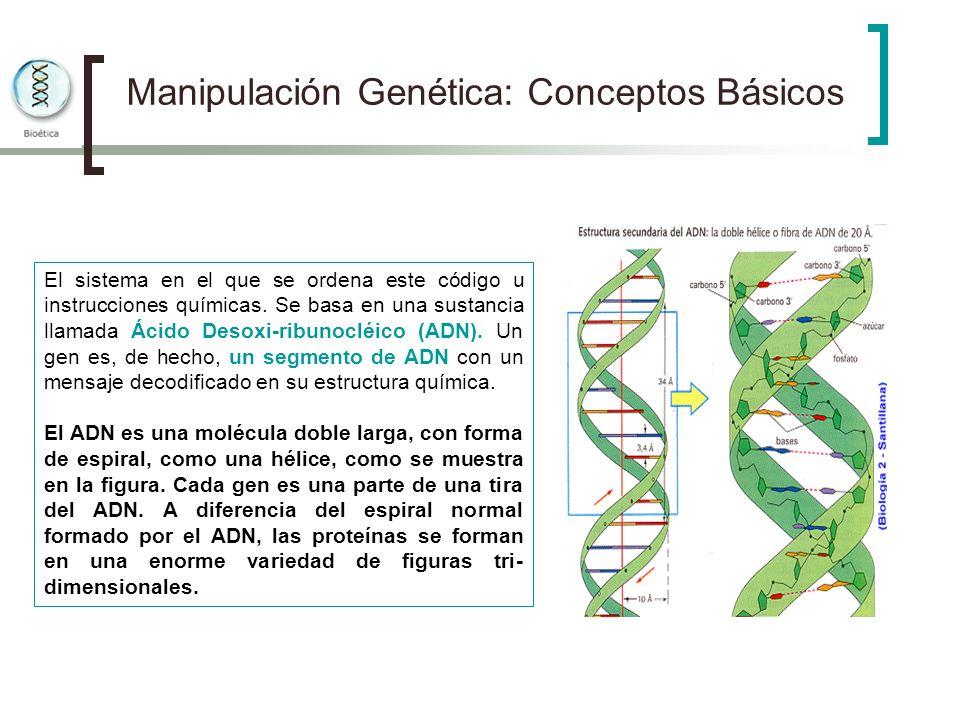Manipulación Genética: Conceptos Básicos