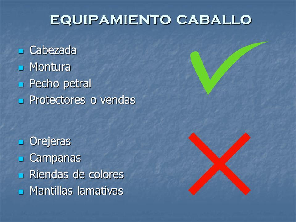 equipamiento caballo Cabezada Montura Pecho petral