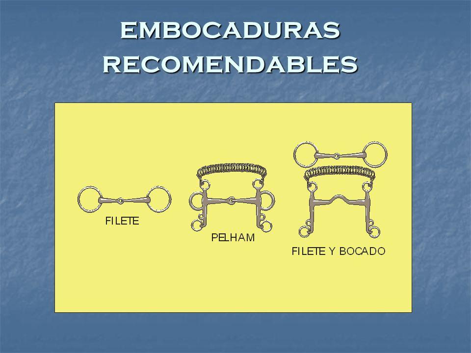 embocaduras recomendables