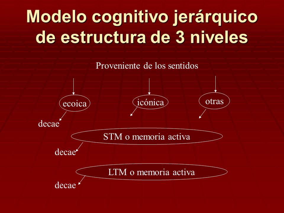 Modelo cognitivo jerárquico de estructura de 3 niveles