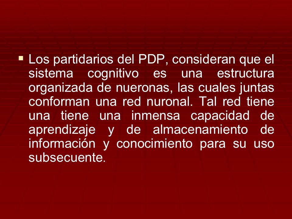 Los partidarios del PDP, consideran que el sistema cognitivo es una estructura organizada de nueronas, las cuales juntas conforman una red nuronal.