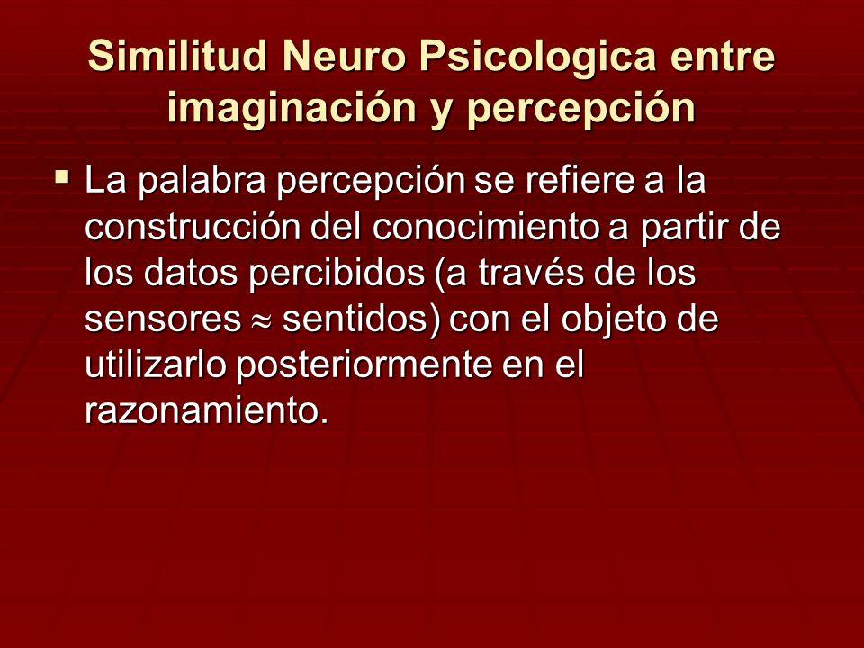 Similitud Neuro Psicologica entre imaginación y percepción