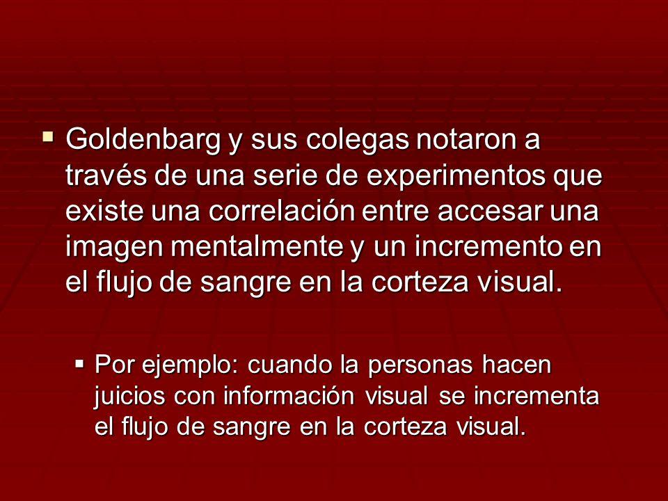 Goldenbarg y sus colegas notaron a través de una serie de experimentos que existe una correlación entre accesar una imagen mentalmente y un incremento en el flujo de sangre en la corteza visual.