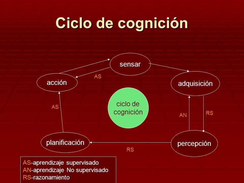 Ciclo de cognición sensar acción adquisición ciclo de cognición