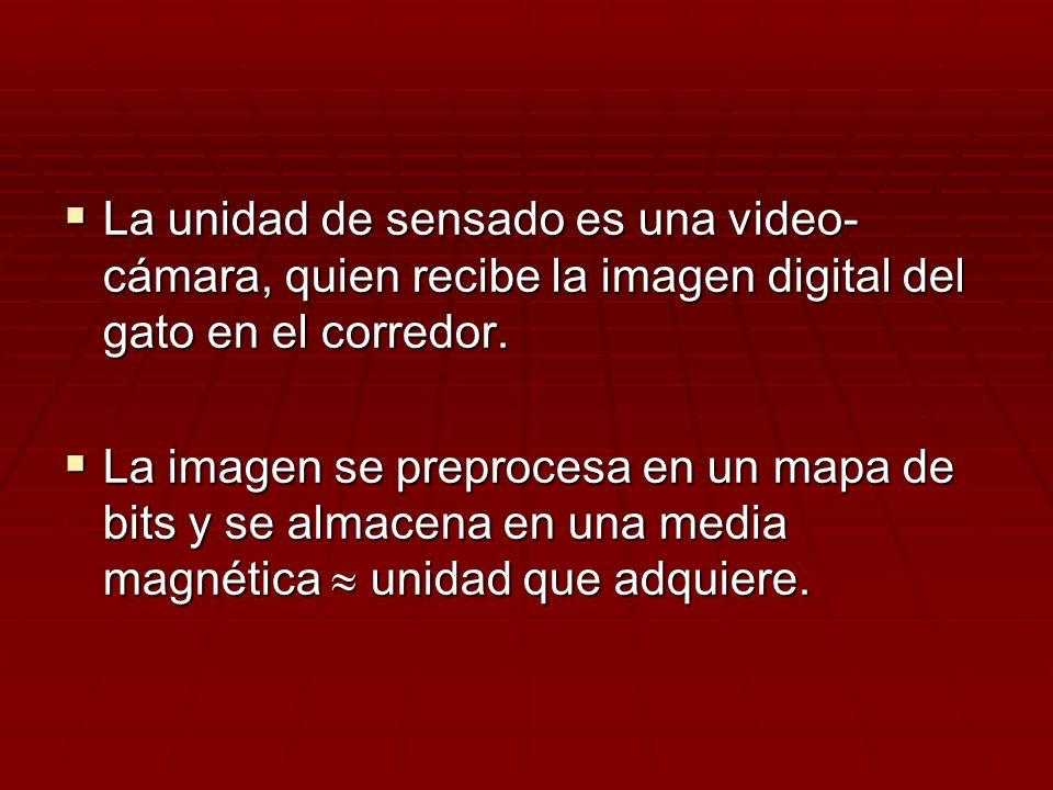 La unidad de sensado es una video-cámara, quien recibe la imagen digital del gato en el corredor.