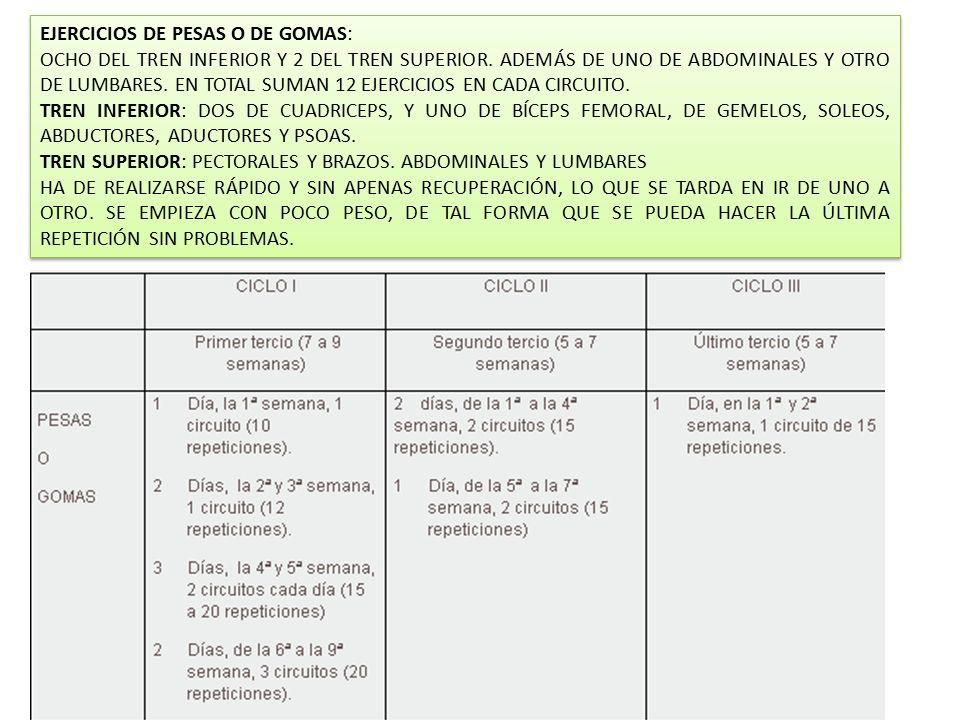 EJERCICIOS DE PESAS O DE GOMAS:
