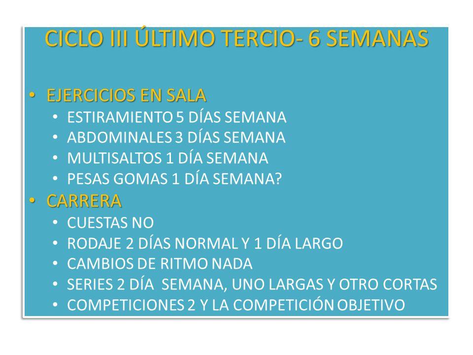 CICLO III ÚLTIMO TERCIO- 6 SEMANAS