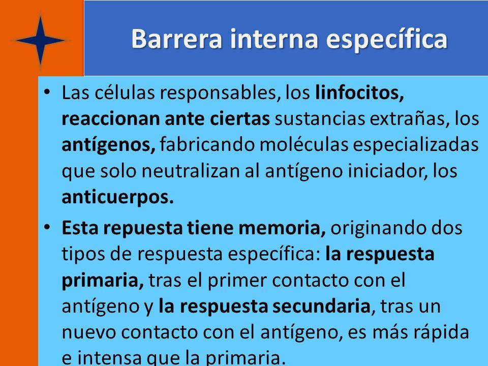 Barrera interna específica