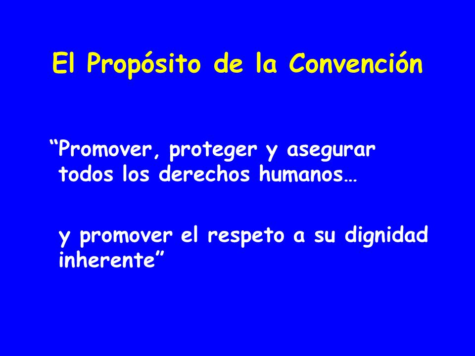 El Propósito de la Convención