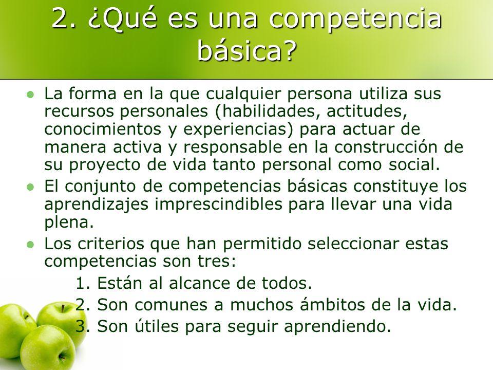 2. ¿Qué es una competencia básica