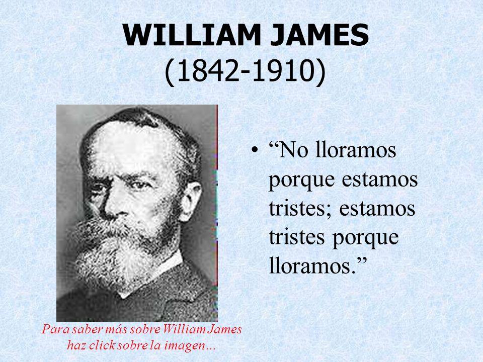 Para saber más sobre William James haz click sobre la imagen…
