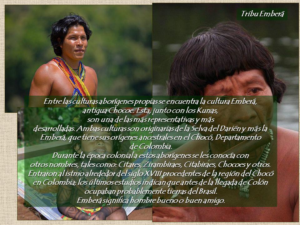 Entre las culturas aborígenes propias se encuentra la cultura Emberá,