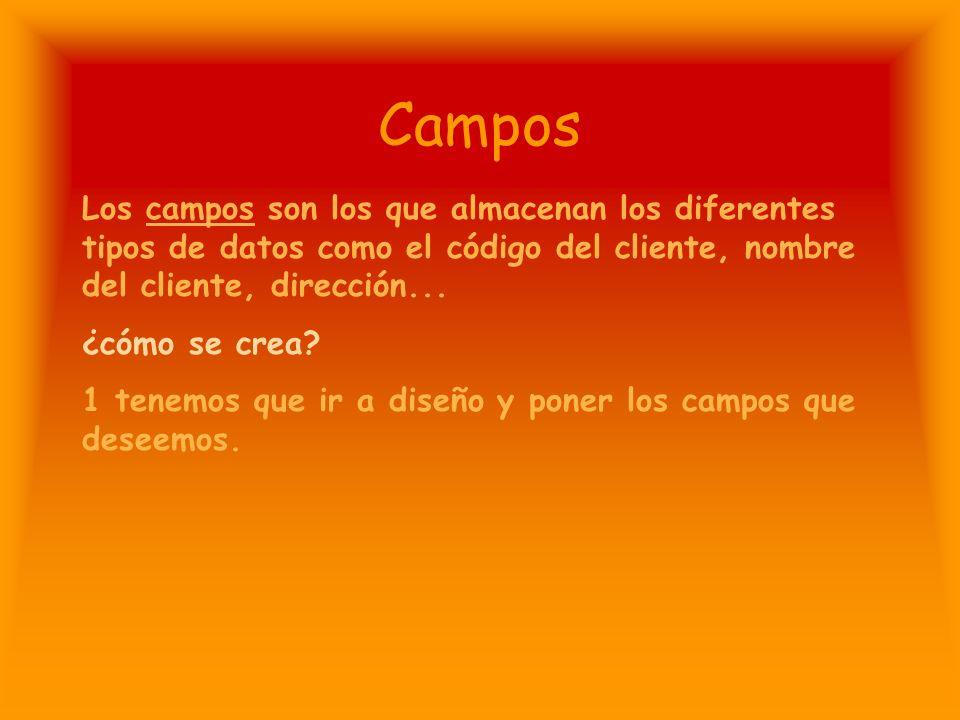 Campos Los campos son los que almacenan los diferentes tipos de datos como el código del cliente, nombre del cliente, dirección...