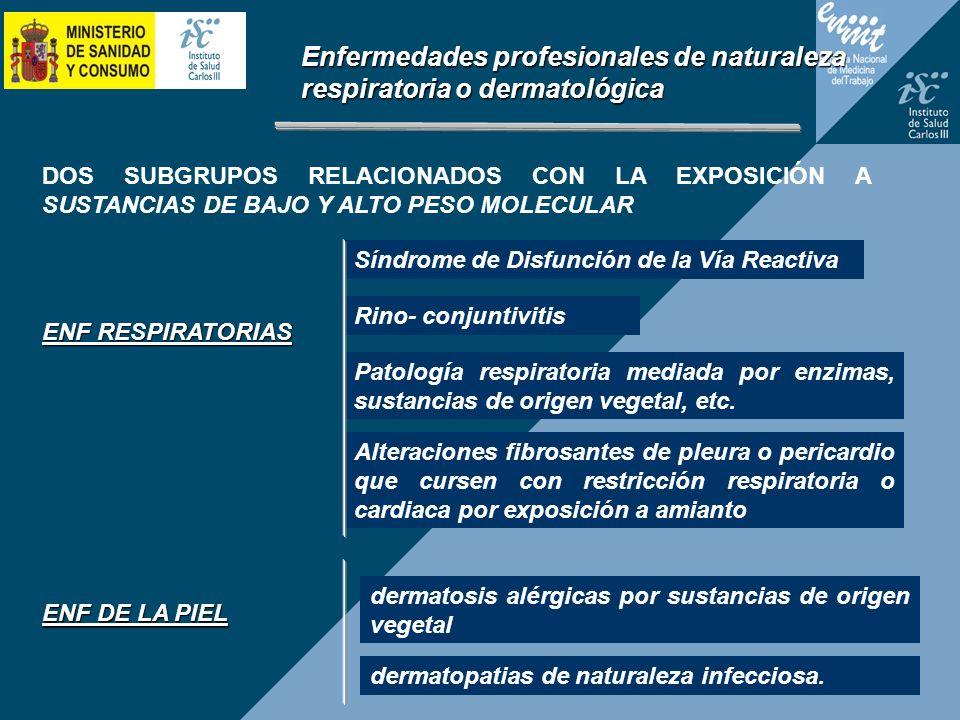 Enfermedades profesionales de naturaleza respiratoria o dermatológica