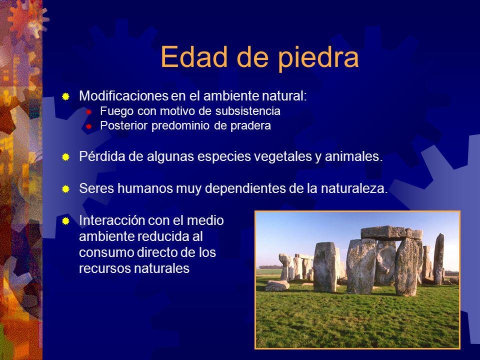 Edad de piedra Modificaciones en el ambiente natural: