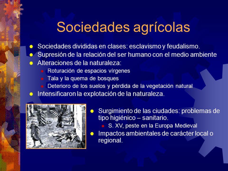 Sociedades agrícolas Sociedades divididas en clases: esclavismo y feudalismo. Supresión de la relación del ser humano con el medio ambiente.