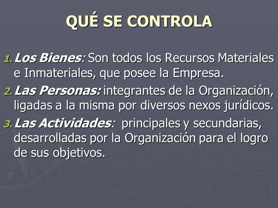 QUÉ SE CONTROLA Los Bienes: Son todos los Recursos Materiales e Inmateriales, que posee la Empresa.