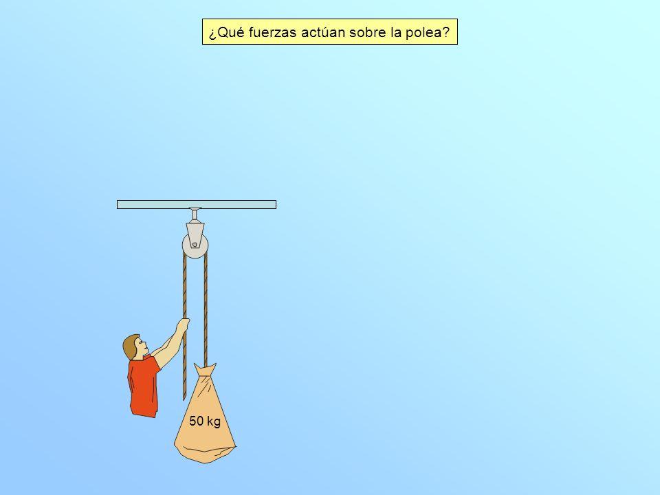 ¿Qué fuerzas actúan sobre la polea