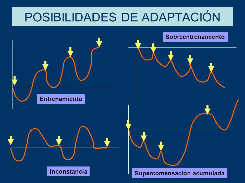 POSIBILIDADES DE ADAPTACIÓN