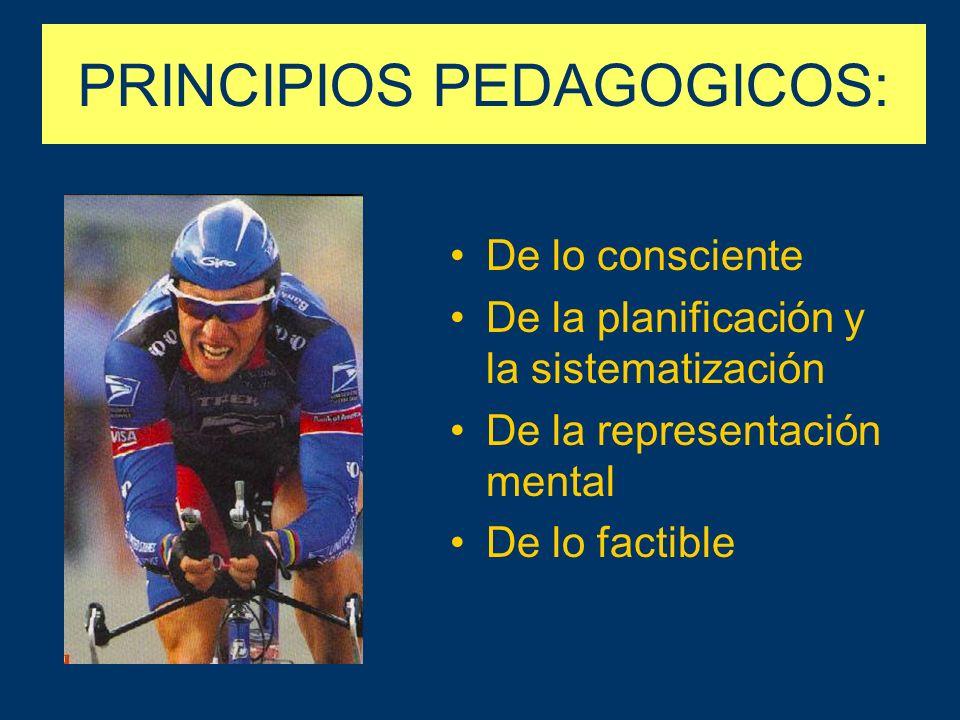 PRINCIPIOS PEDAGOGICOS: