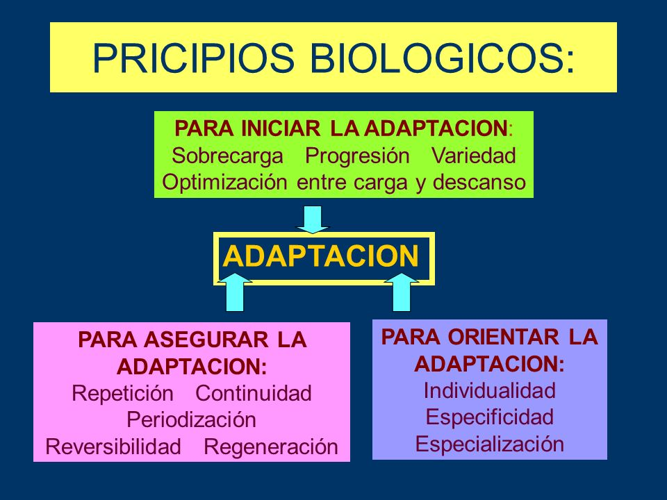 PRICIPIOS BIOLOGICOS: