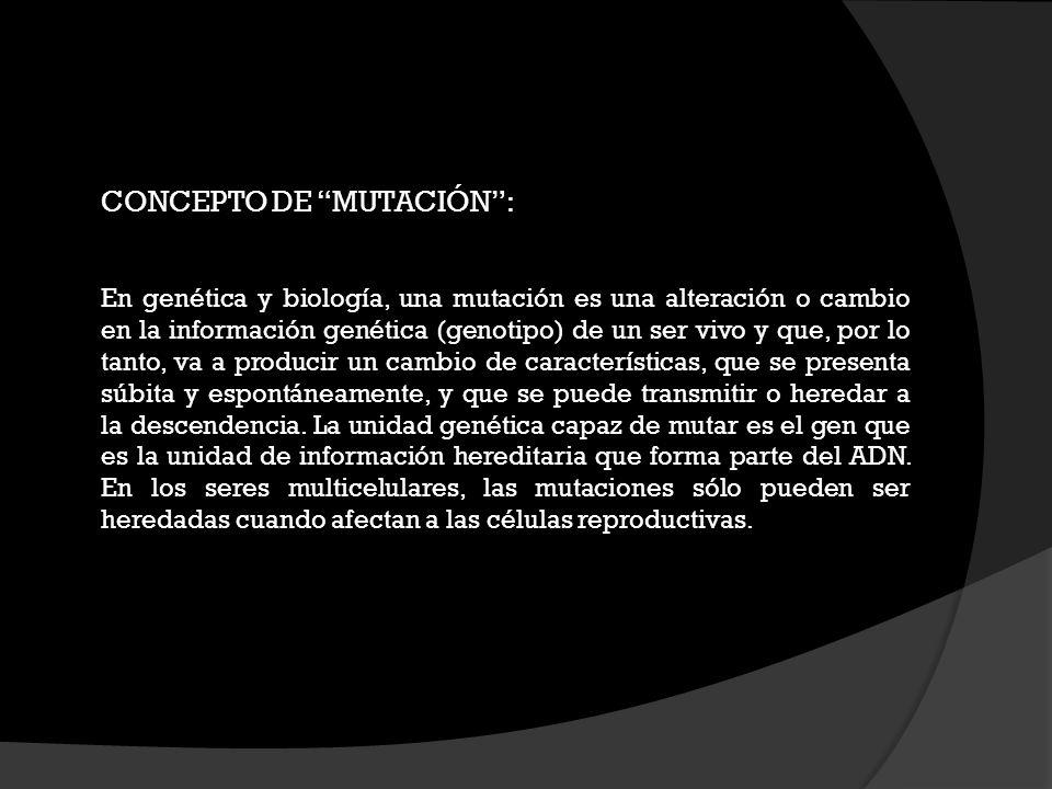 CONCEPTO DE MUTACIÓN :