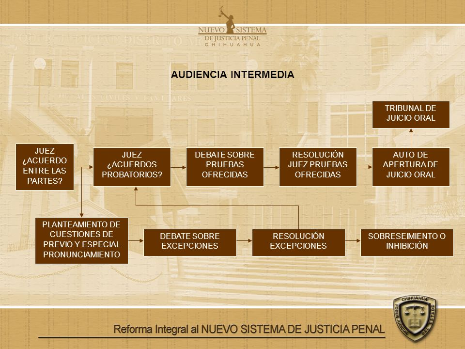 AUDIENCIA INTERMEDIA TRIBUNAL DE JUICIO ORAL
