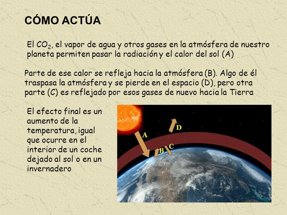 CÓMO ACTÚA El CO2, el vapor de agua y otros gases en la atmósfera de nuestro planeta permiten pasar la radiación y el calor del sol (A)
