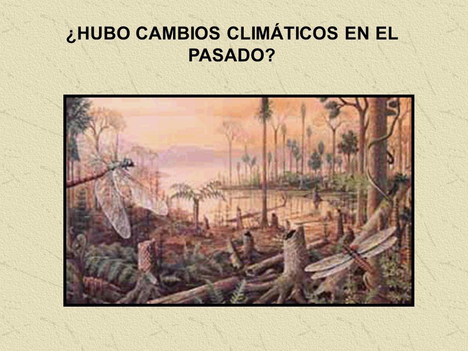 ¿HUBO CAMBIOS CLIMÁTICOS EN EL PASADO