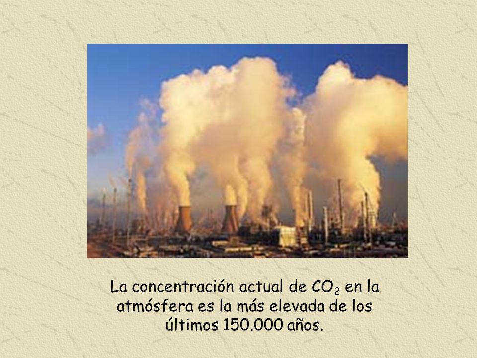 La concentración actual de CO2 en la atmósfera es la más elevada de los últimos 150.000 años.