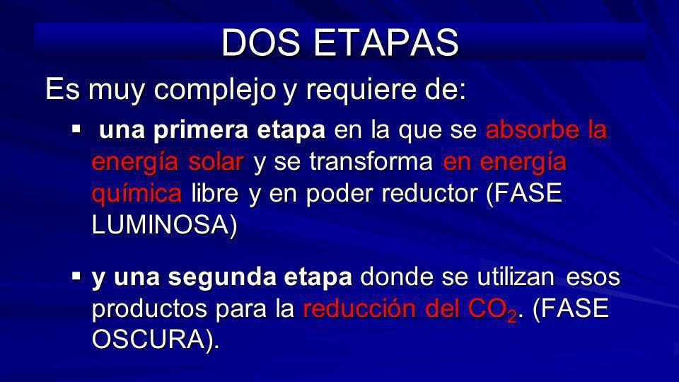 DOS ETAPAS Es muy complejo y requiere de: