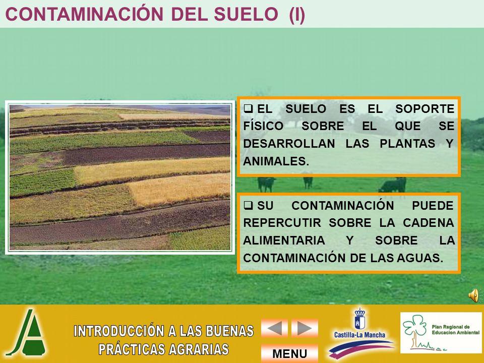 CONTAMINACIÓN DEL SUELO (I)