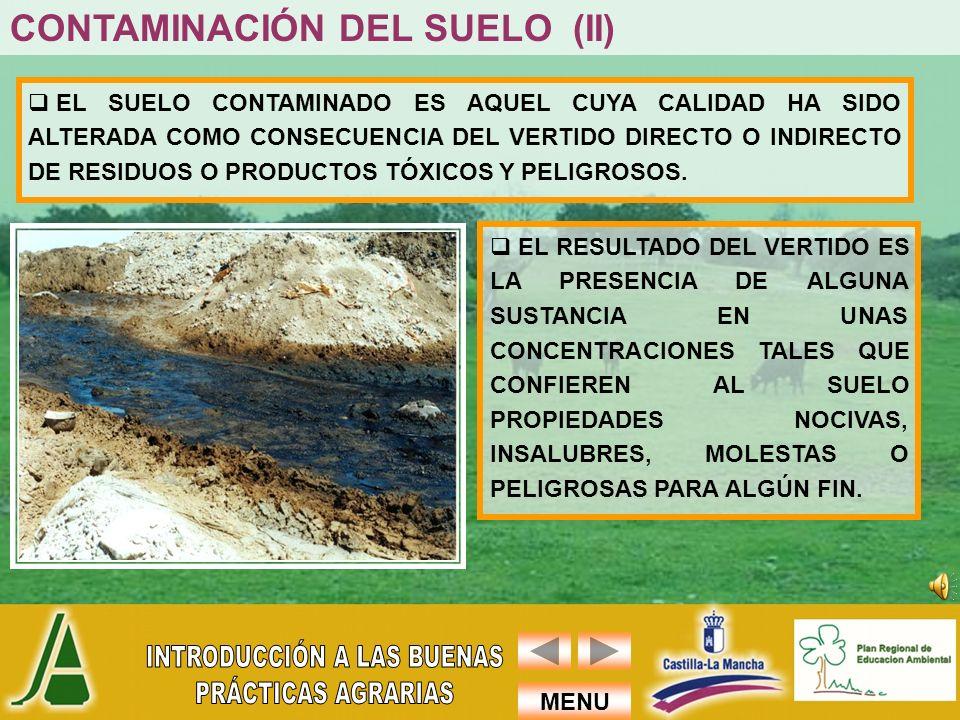 CONTAMINACIÓN DEL SUELO (II)