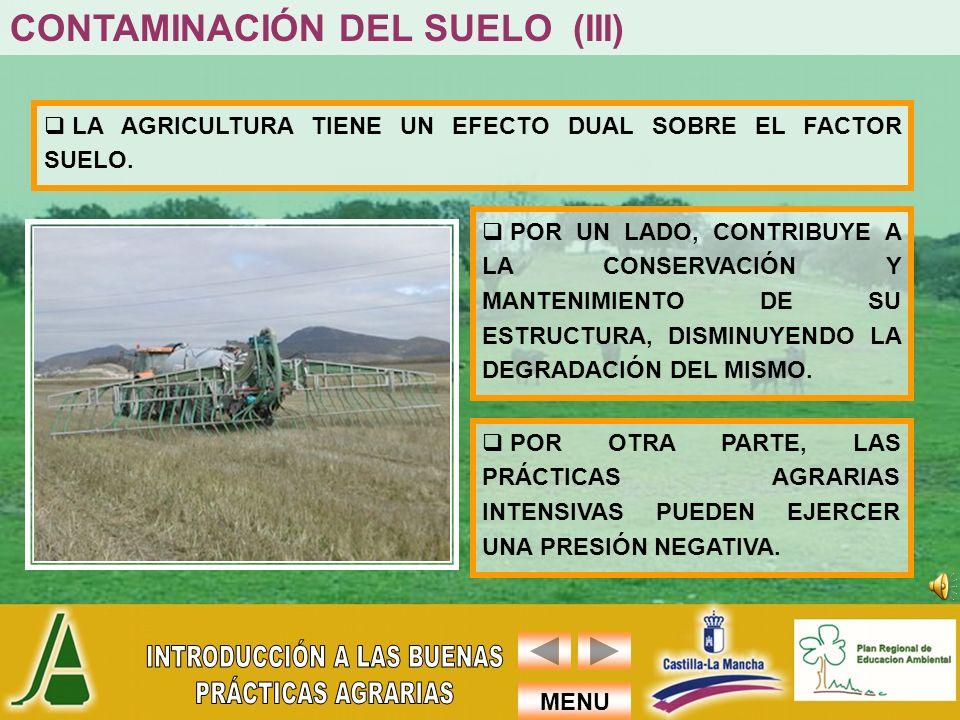 CONTAMINACIÓN DEL SUELO (III)