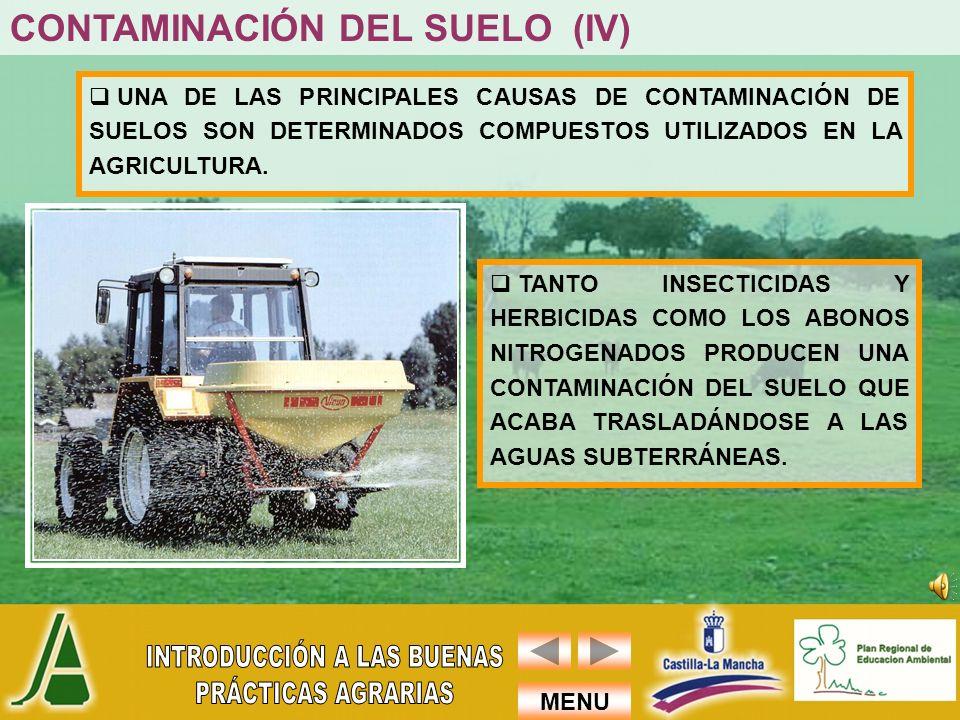 CONTAMINACIÓN DEL SUELO (IV)