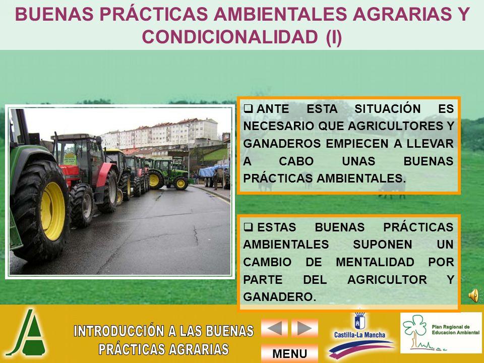 BUENAS PRÁCTICAS AMBIENTALES AGRARIAS Y CONDICIONALIDAD (I)