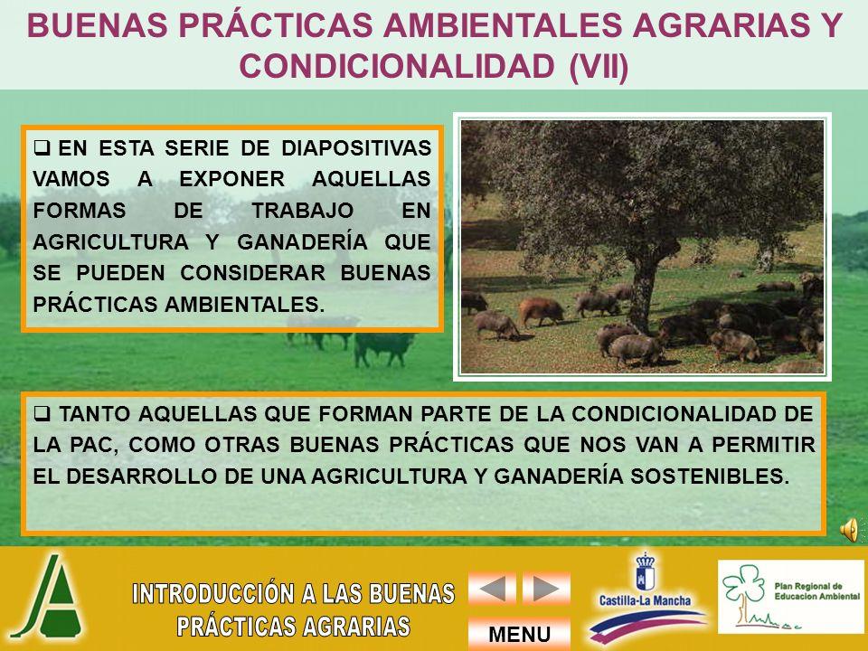 BUENAS PRÁCTICAS AMBIENTALES AGRARIAS Y CONDICIONALIDAD (VII)