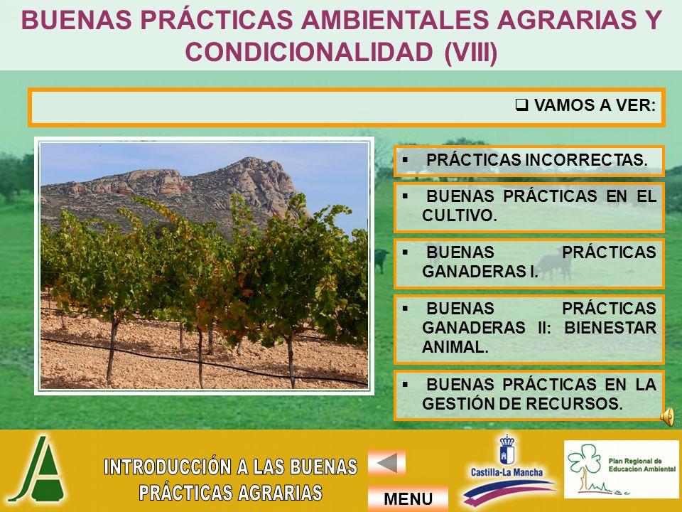 BUENAS PRÁCTICAS AMBIENTALES AGRARIAS Y CONDICIONALIDAD (VIII)
