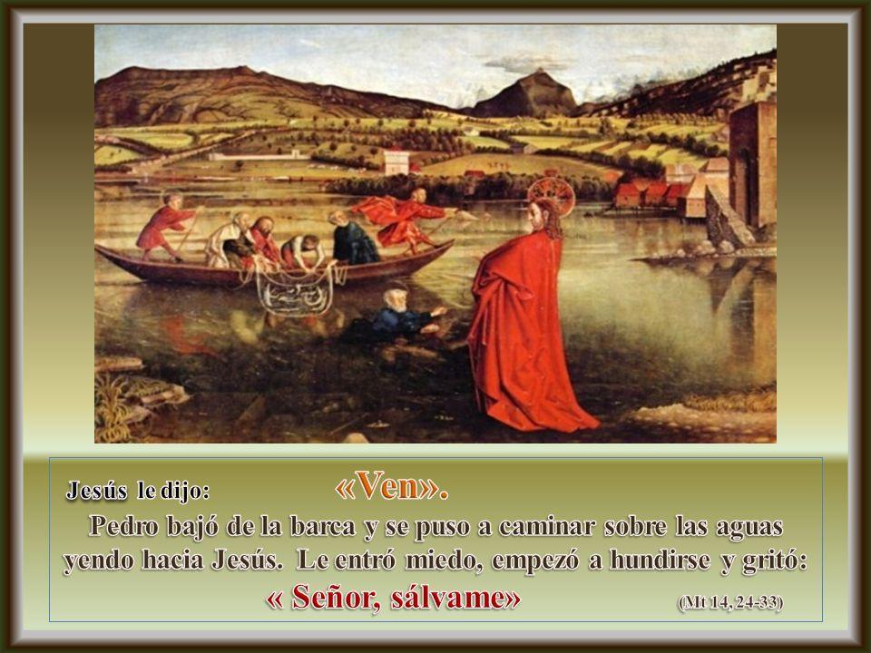 « Señor, sálvame» (Mt 14, 24-33) Jesús le dijo: «Ven».