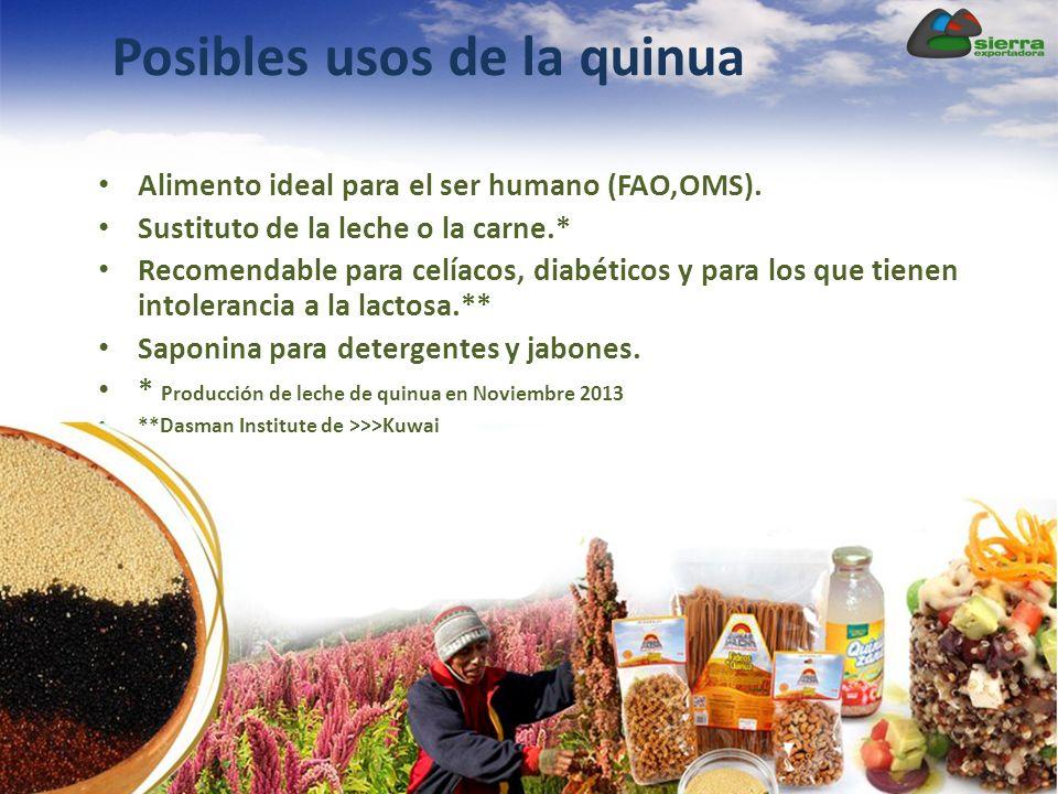 Posibles usos de la quinua