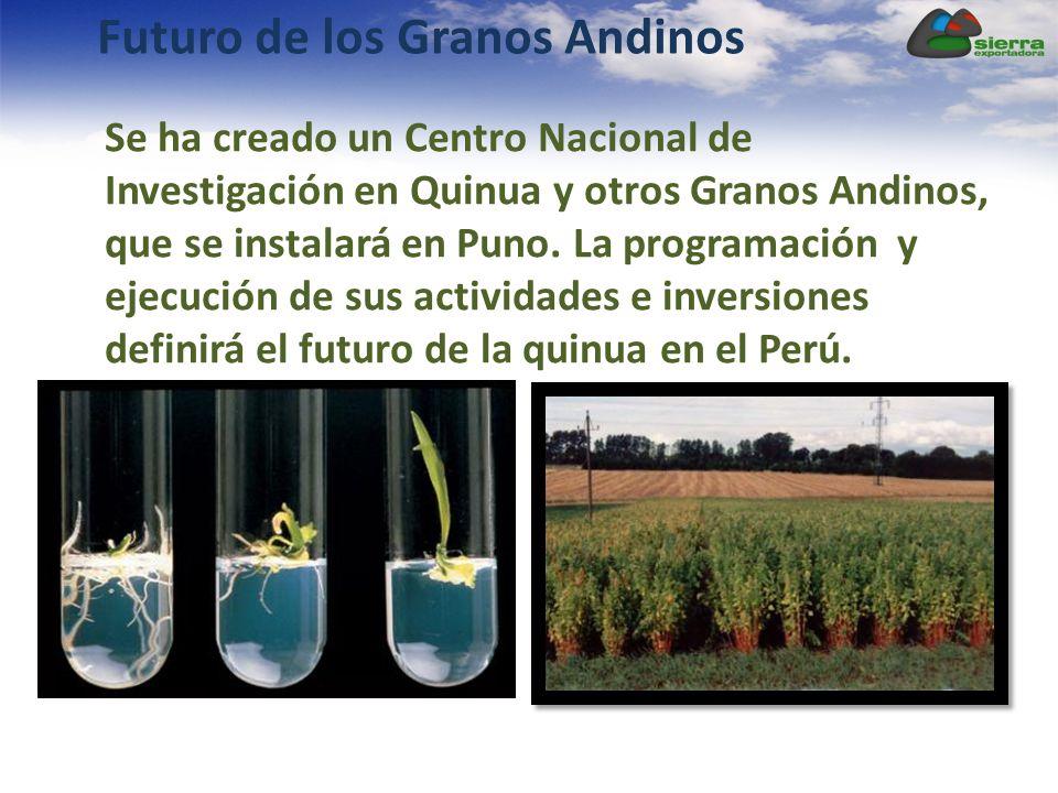 Futuro de los Granos Andinos