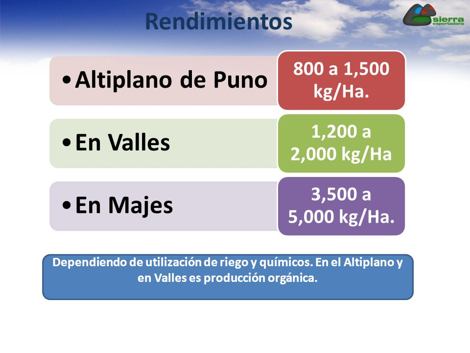 Rendimientos 800 a 1,500 kg/Ha. Altiplano de Puno. 1,200 a 2,000 kg/Ha. En Valles. 3,500 a 5,000 kg/Ha.