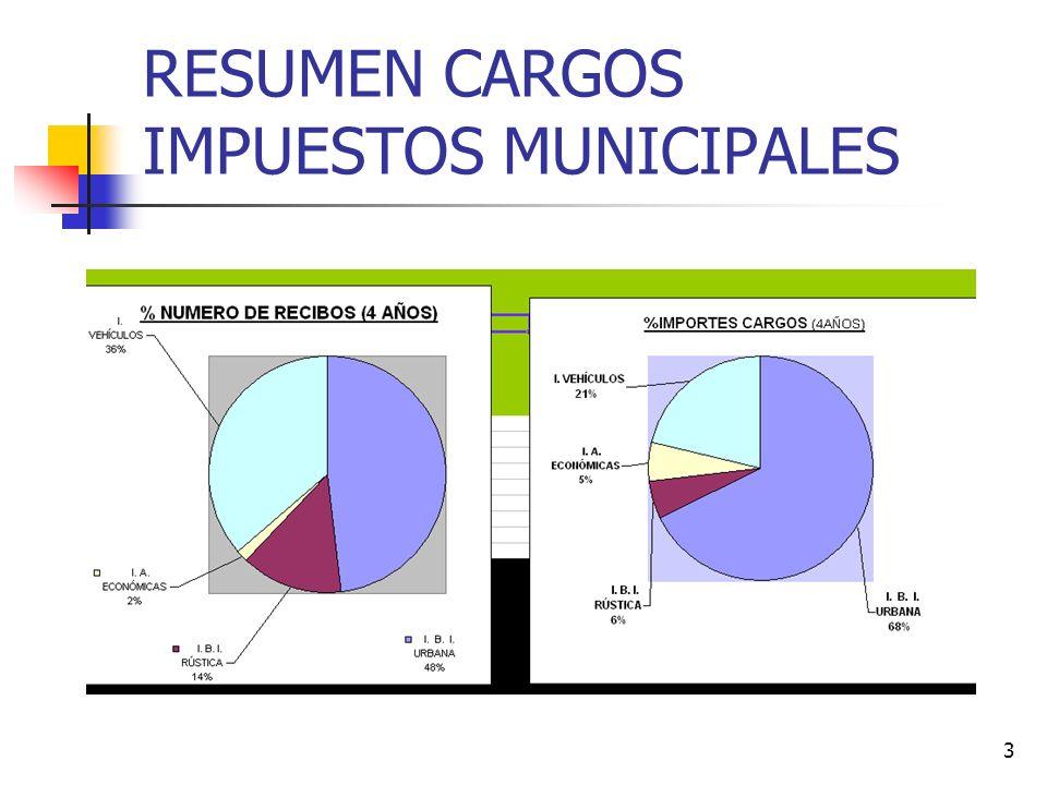 RESUMEN CARGOS IMPUESTOS MUNICIPALES