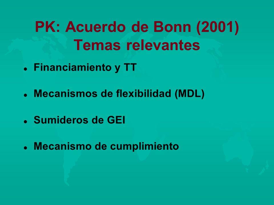 PK: Acuerdo de Bonn (2001) Temas relevantes